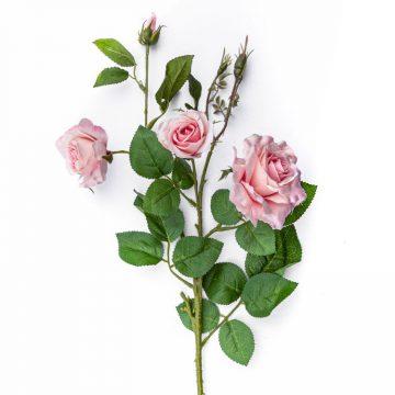 Wilde Roos Roze 75 cm