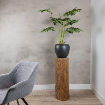 Boomstam zuil Oak D ± 25 cm- 30 cm H 80 cm