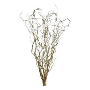 10 Decoratietakken Goud 70 cm