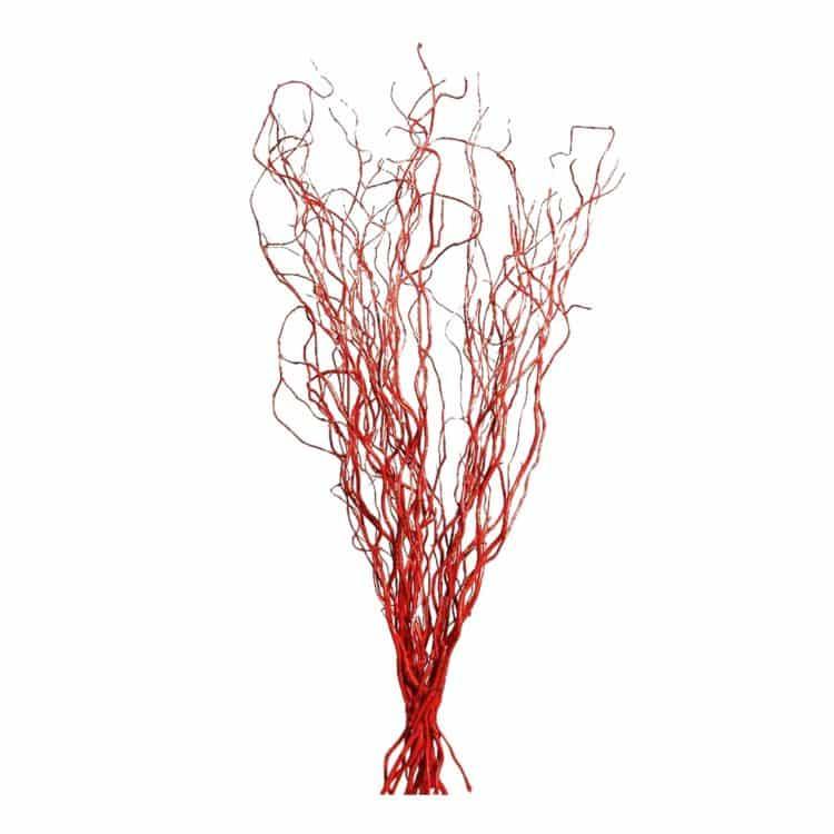 5 Decoratietakken Rood 170 cm