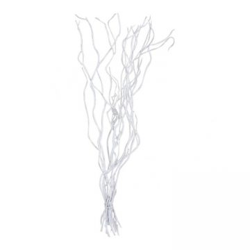 10 Decoratietakken Wit 120 cm