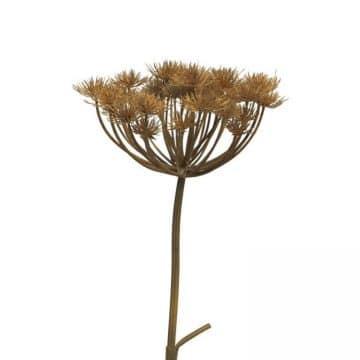 Berenklauw Bruin 95 cm