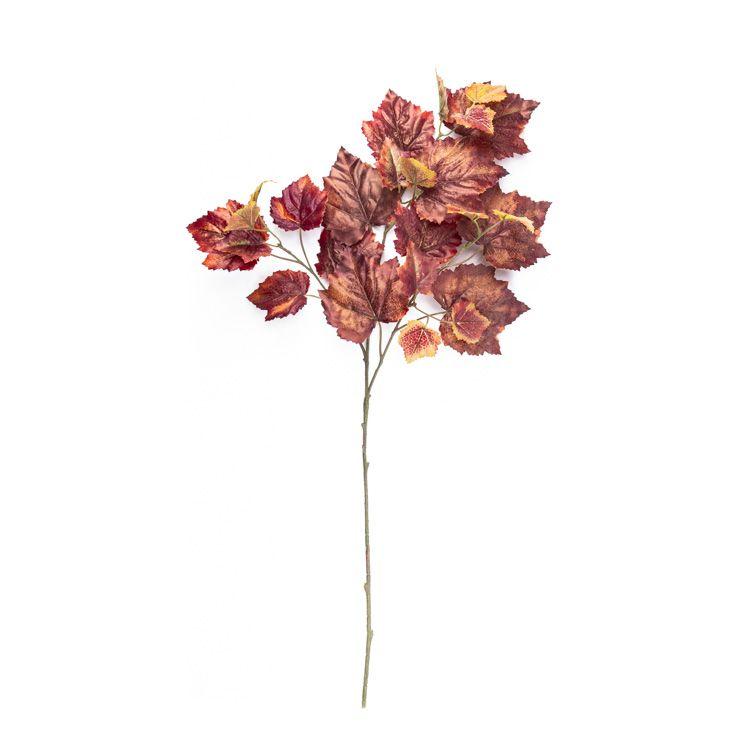 Berkenblad Rood 65 cm