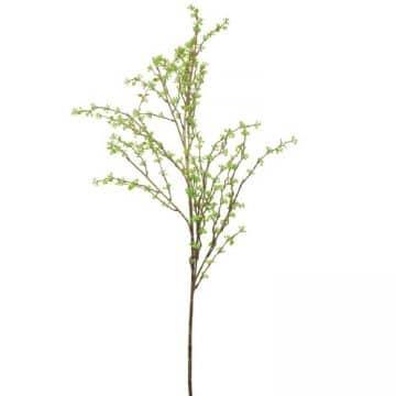Bessen tak Groen 140 cm