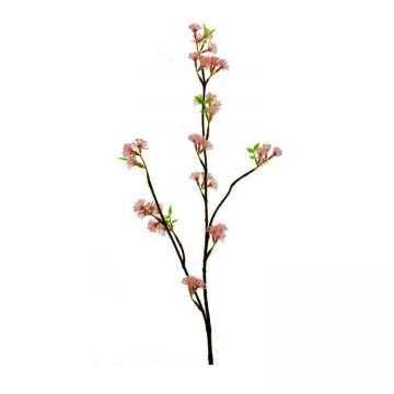 Bloesem Knop Roze 80 cm