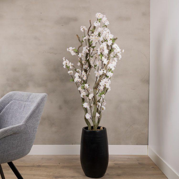 Bloesem kronkel boom zacht Roze ± 140 cm (Incl. zwarte pot)