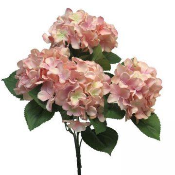 Bos Hortensia Rose