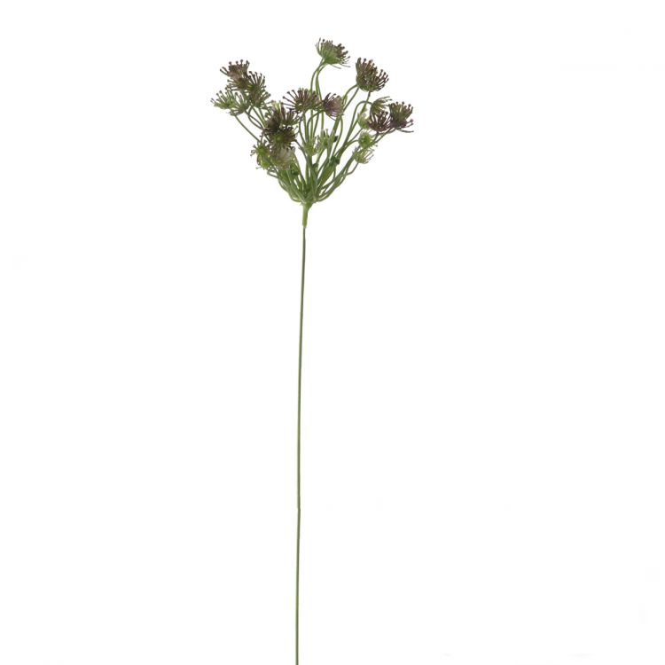 Dille gemêleerd Paars-Groen- Wit 50 cm