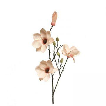 Magnolia  Soft Zalm 80 cm