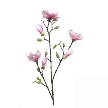 Magnolia Wit- Fuchsia met bloemen knoppen 85 cm.