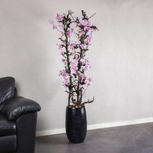 Peren bloesemboom Roze ± 150 cm (incl. zwarte pot)
