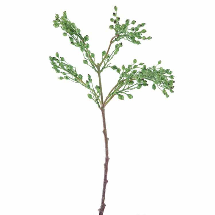 Tak Wilde Rozen Besjes Groen 55cm