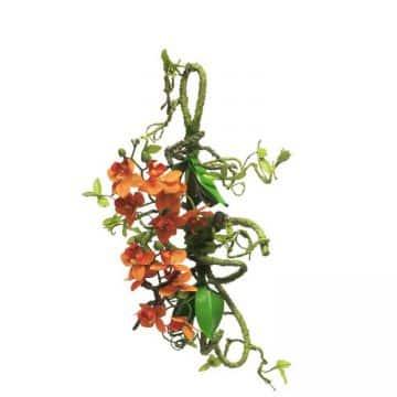 Vanda Orchidee Oranje Decoratie 55 cm