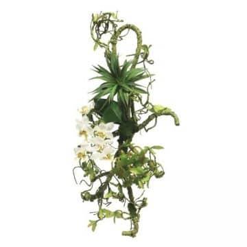 Vanda Orchidee Wit Decoratie 55 cm
