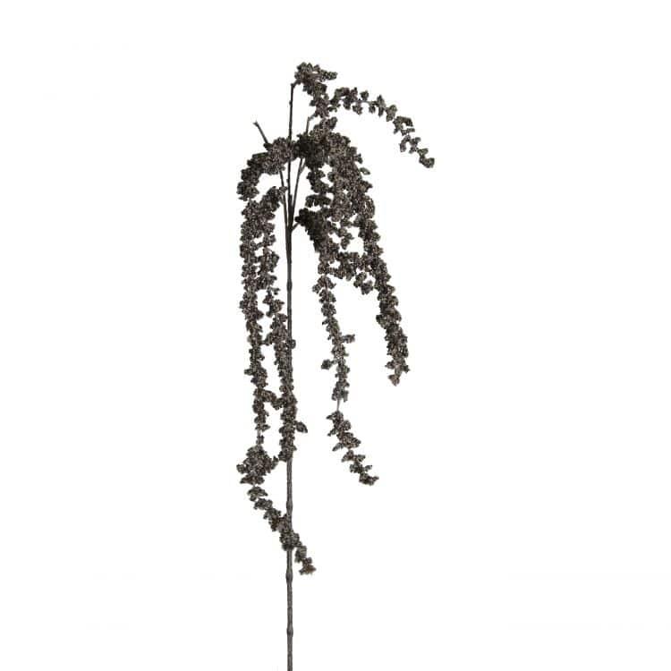 Kattenstaart-Amarant Grijs 105 cm