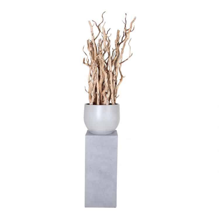 Brocante Stammen Decoratie lage zuil ± 170 cm
