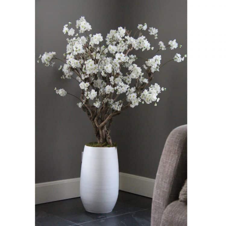 Fruit bloesemboom Wit ± 140 cm (incl. witte pot)