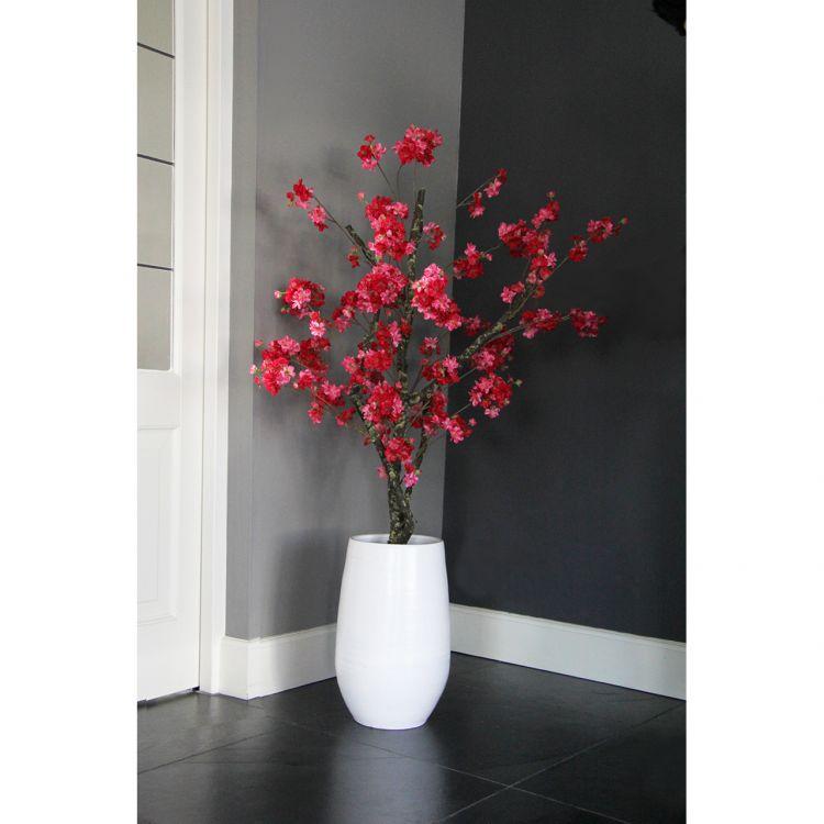 Fuchsia Bloesemboom ± 150 cm (incl. witte  pot)