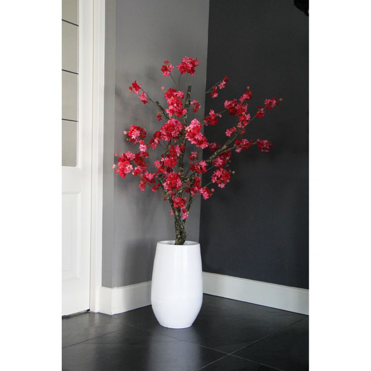Fuchsia Bloesemboom ± 150 cm (excl. pot)