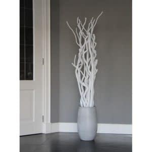 Set Witte Stammen 165 cm (excl. pot)