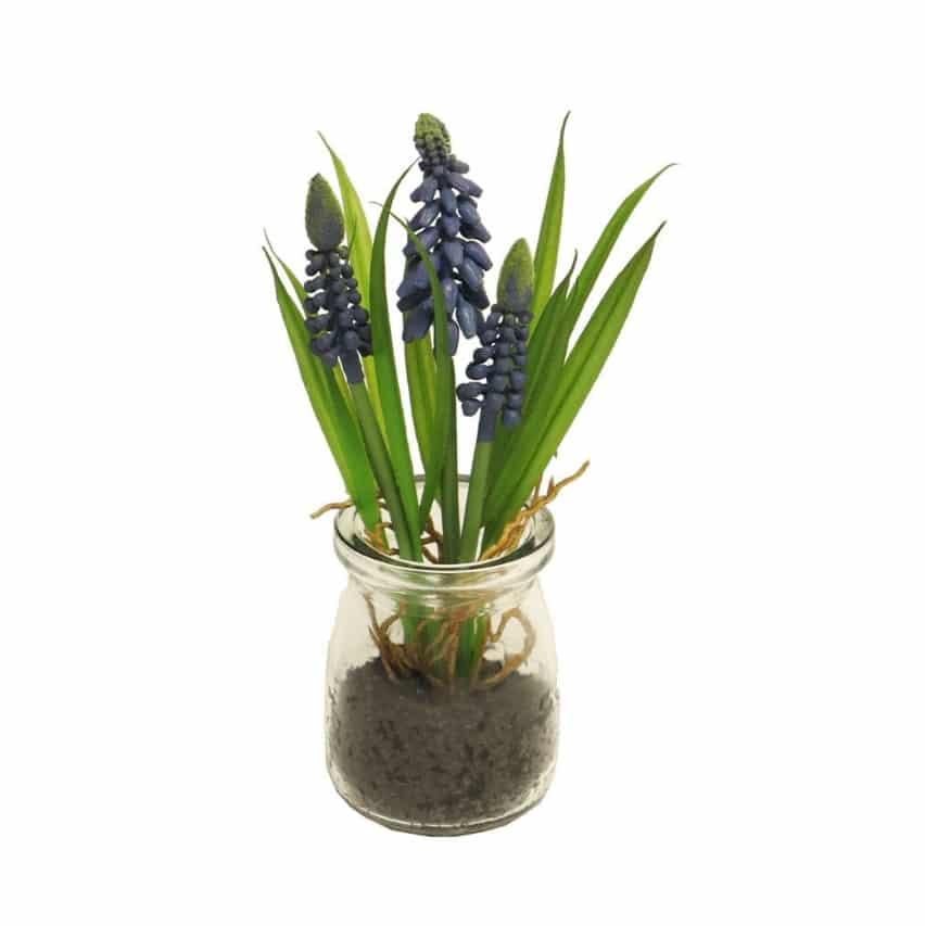 Blauwe druifjes in glas 17 cm