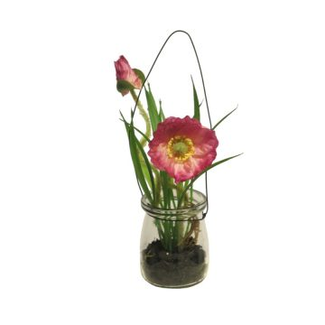 Anemoon Roze in glas 16 cm