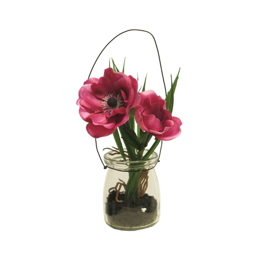 Anemoon Fuchsia in glas 16 cm