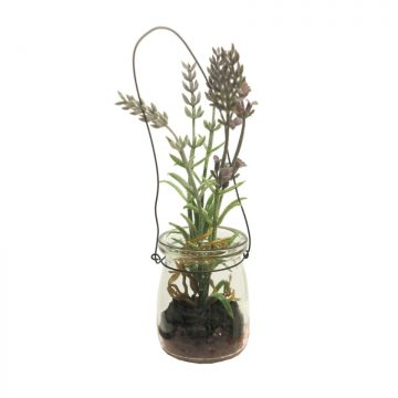 Lavendel in glas 16 cm