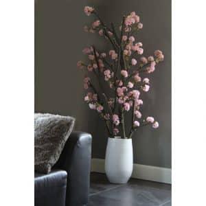 Kersen Bloesemboom Dubbel. Incl. pot  ± 150 cm