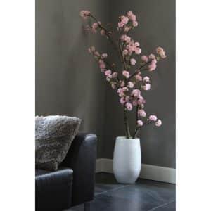 Kersen Roze Bloesemboom. Incl pot. ± 150 cm