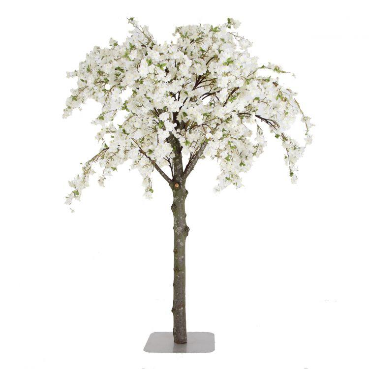 Grote Witte Bloesemboom - op maat gemaakt