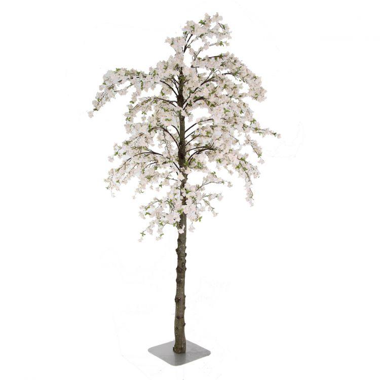 Grote Zachtroze Bloesemboom - op maat gemaakt