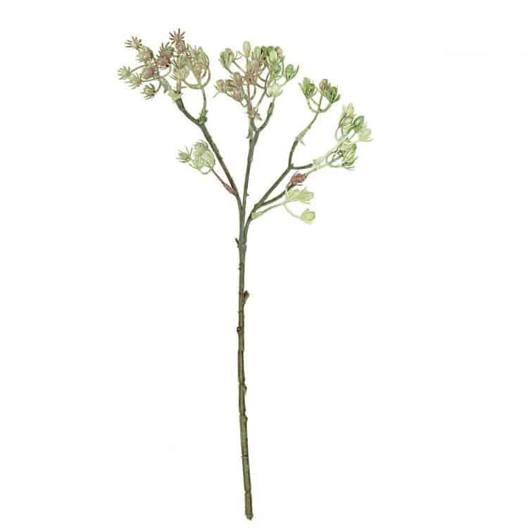 Bloemen besjes Groen