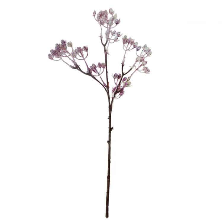 Bloemen besjes Violet- Wit