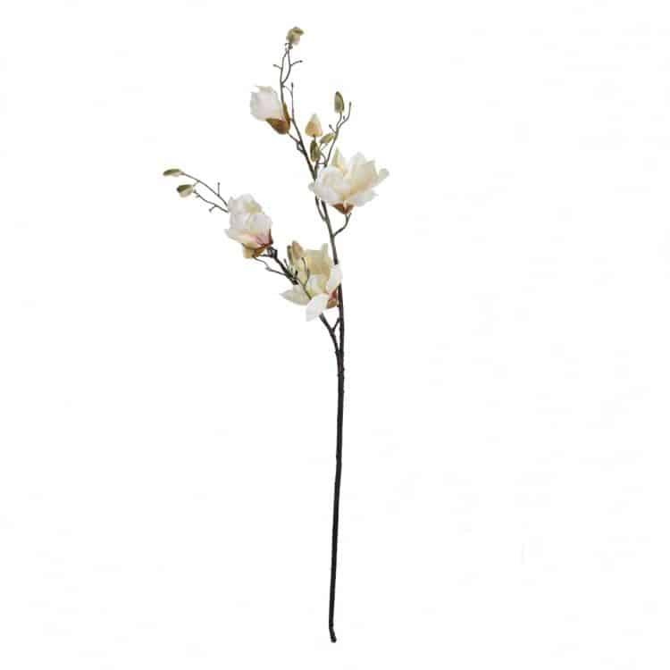 Magnolia Crème - Roze 90 cm