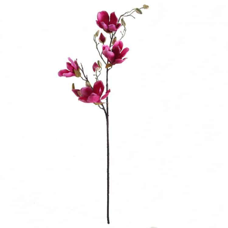 Magnolia Fuchsia 90 cm
