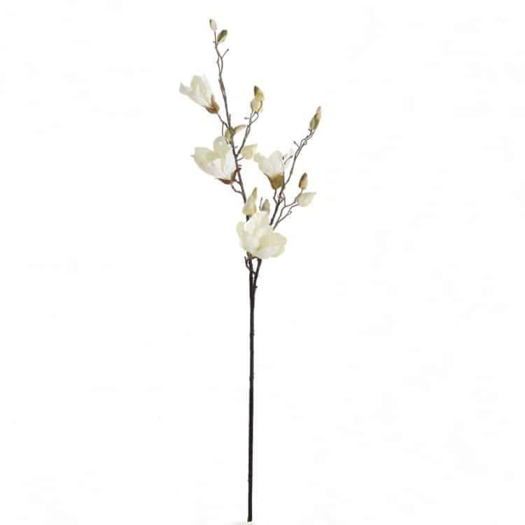 Magnolia Crème 90 cm