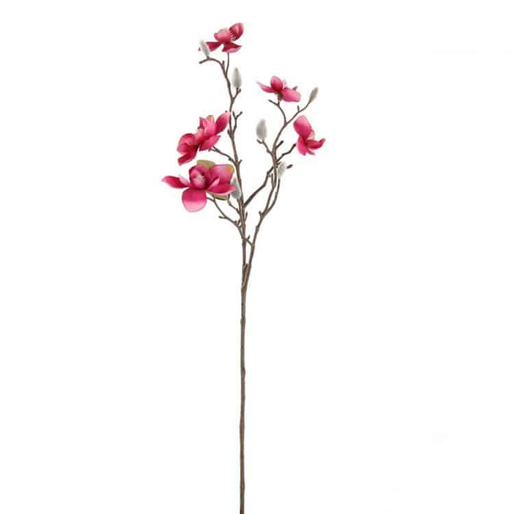 Magnolia en knoppen Fuchsia. 65 cm. kleine bloemen
