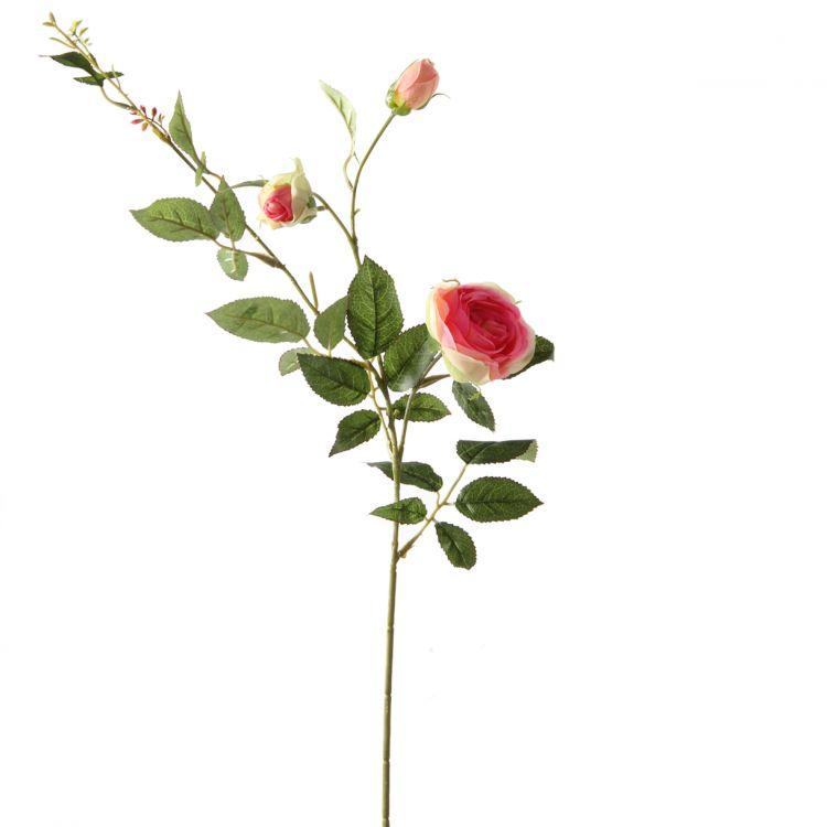 Rozentak Roze/Groen 60 cm