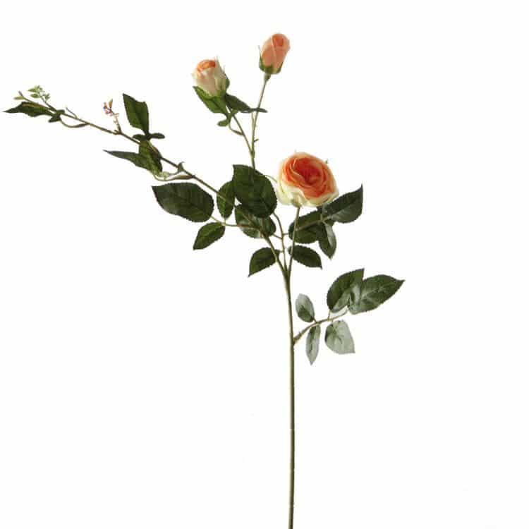 Rozentak Oranje/Groen 60 cm