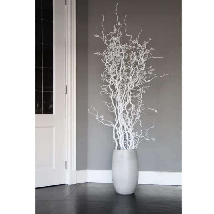 Set Witte Kronkeltakken 165 cm (incl. pot)