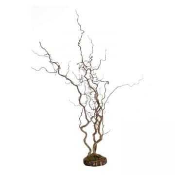 Kronkeltakken Naturel op voet 110 cm