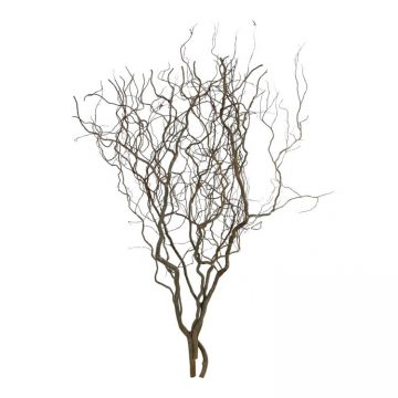 Naturel Takken struik 120 cm