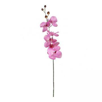 Orchidee Roze 75 cm