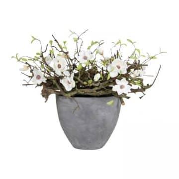 Decoratie  White Magnolia
