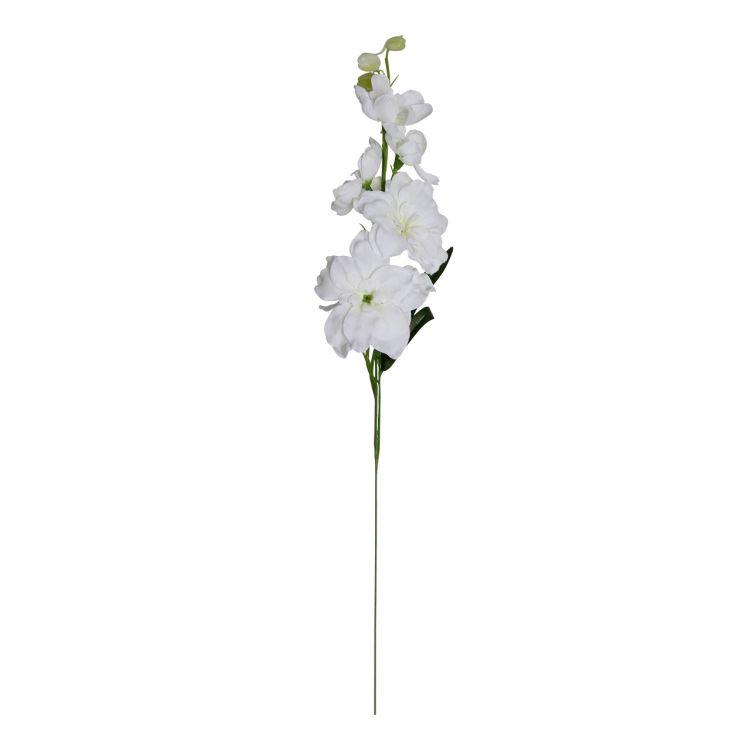 Ridderspoor Wit klein 40 cm