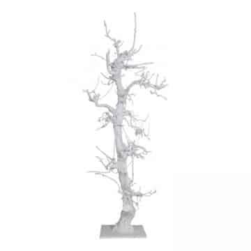 Robuuste Witte Fruitboom 150 cm