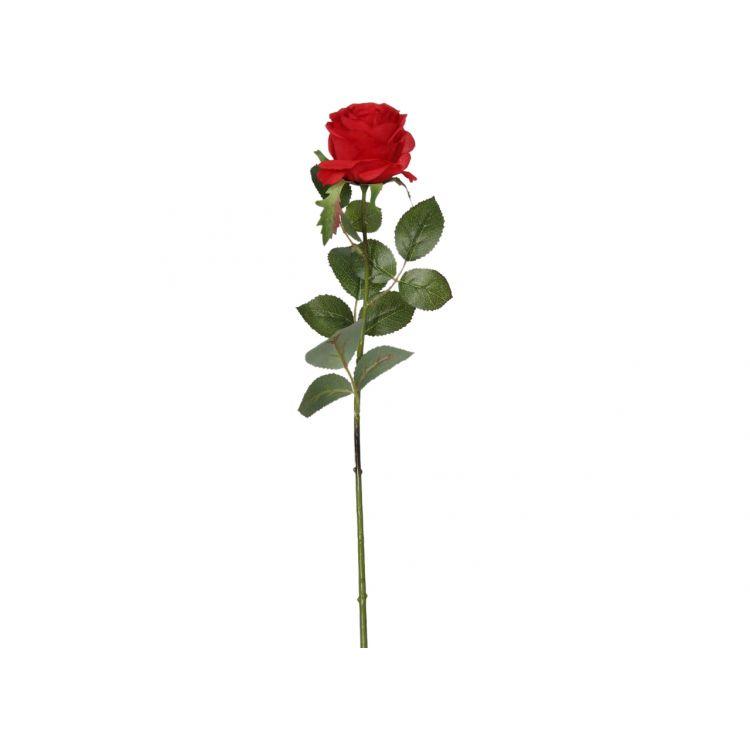 Roos op bladsteel Rood  65 cm