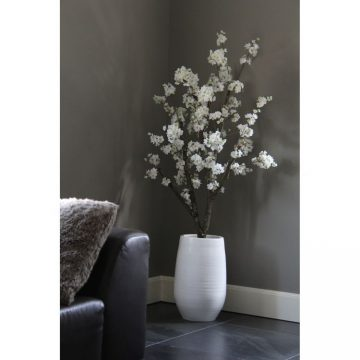 Witte Bloesemboom ± 150  (incl. witte  pot)