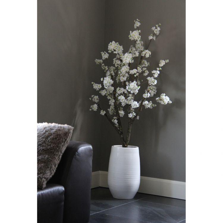 Witte Bloesemboom ± 150 cm (excl. pot)